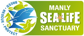 Manly SEA LIFE Sanctuary - Holiday Byron Bay