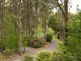 Mount Lofty Botanic Garden - Holiday Byron Bay