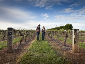 Coonawarra Wineries Walking Trail - Holiday Byron Bay