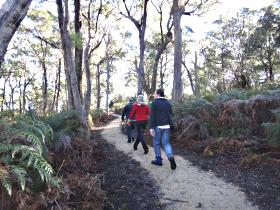 Bridport Walking Track - Holiday Byron Bay