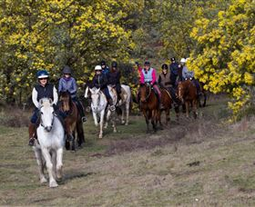 Burnelee Excursions on Horseback - Holiday Byron Bay