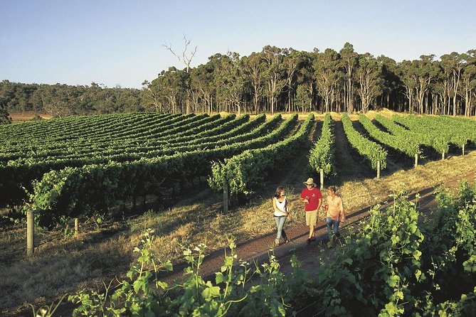 Margaret River Caves Wine and Cape Leeuwin Lighthouse Tour from Perth - Holiday Byron Bay