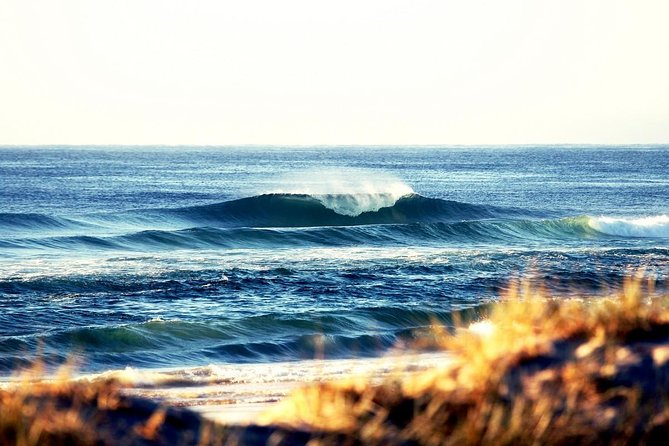 7-Day Byron Bay Evans Head and Moonee Beach Surf Safari from Brisbane Gold Coast or Byron Bay - Holiday Byron Bay