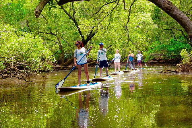 Byron Stand Up Paddle Nature Tour - Holiday Byron Bay